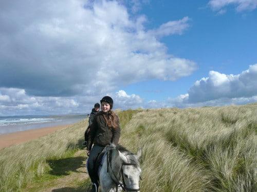 DELS horses in dunes