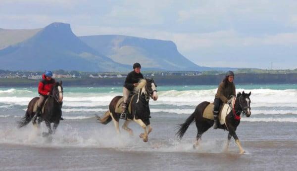 DELS horses on beach 2