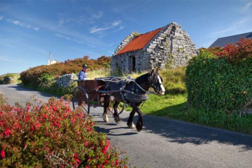 ireland-aran-island-horse-cart